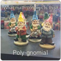 poly-gnomials